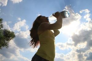 La dieta del Agua